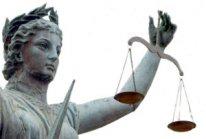 porównaj informacje o tym prawniku